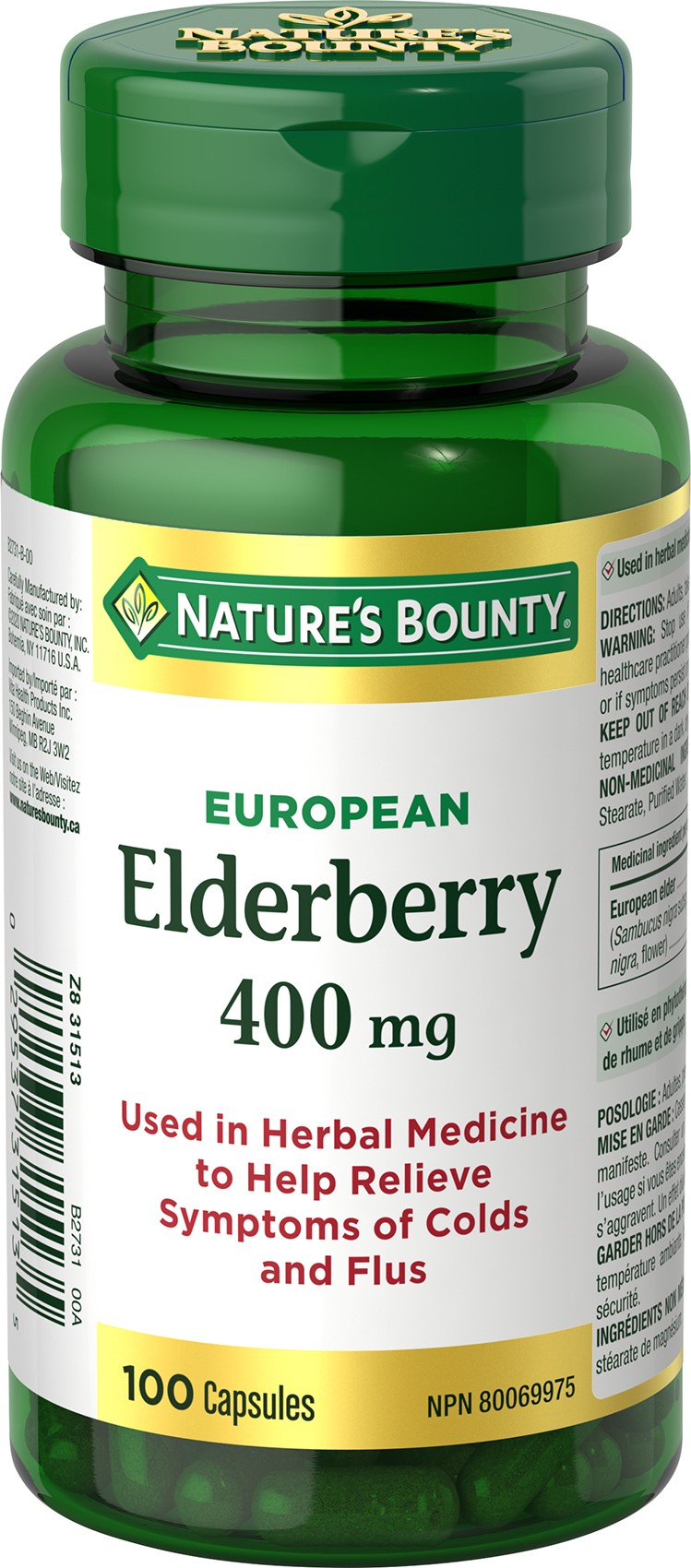 European Elderberry